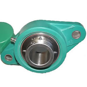 Thermoplastic Bearing Housing 2 Bolt Flange